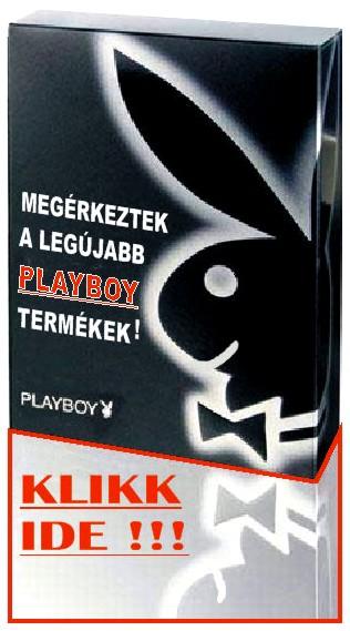 KERESD A PLAYBOY-T!